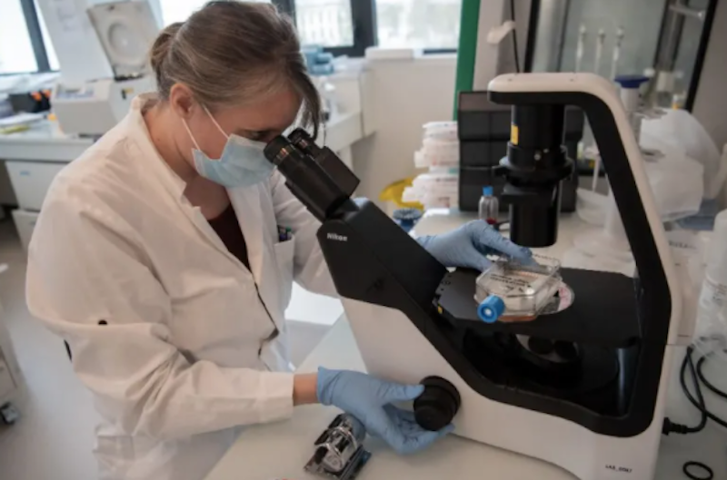 Mother of invention: Study highlights gender gap in health innovations