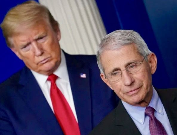 Trump team was shocked Dr. Fauci would 'dare to contradict the president': report