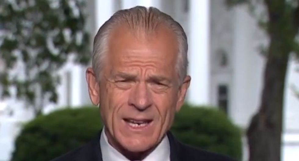 CNN interview derails as Trump aide Peter Navarro reminisces about drinking from a 'colored' water fountain at Woolworth's