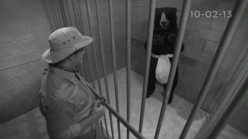 Conan: Live ma*turbating bear webcam just as good as panda cam, right?
