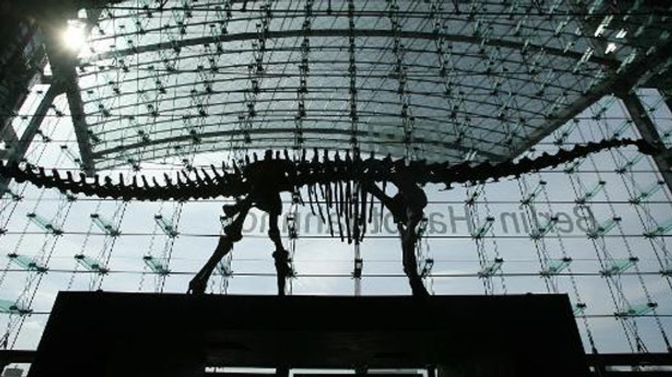 Skeleton of a huge diplodocus dinosaur to go on sale
