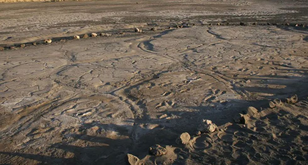 Newly uncovered prehistoric human footprints provide a rare glimpse into ancient human group behavior