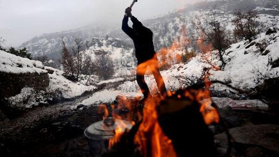 Study downgrades climate impact of wood burning