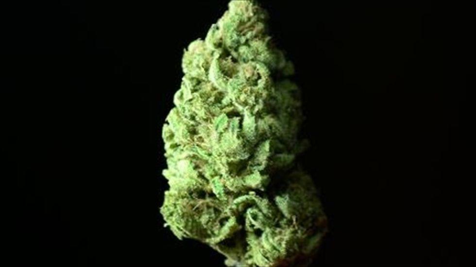 Residents of Washington, DC to vote on legalizing marijuana in November