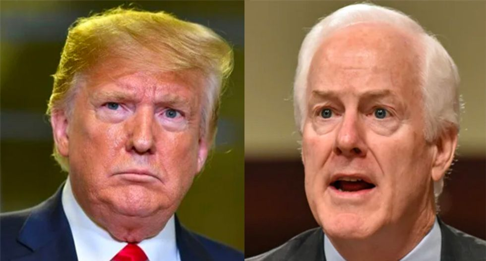 Conservative unleashes on John Cornyn and Republicans like him who 'deserve to lose' for fear of standing up to Trump