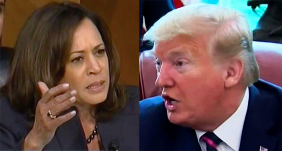 In Kamala Harris, Biden chose the perfect prosecutor to go after 'predator' Donald Trump: columnist