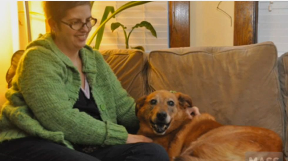Mass. cancer patient, too busy being sick to renew a dog license, ends up in jail