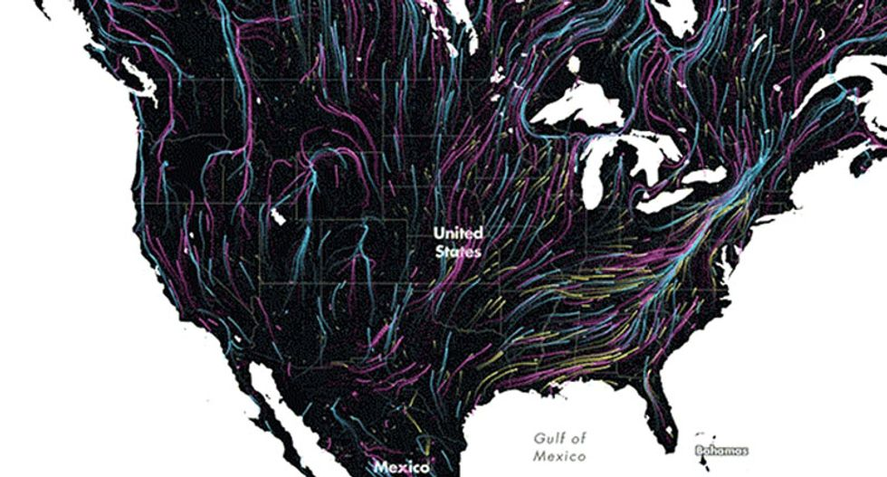 This beautiful animated map shows the future of animal migration