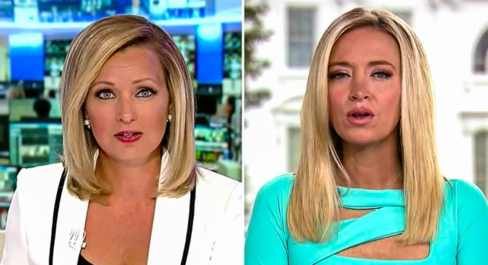 Kayleigh McEnany: Trump was using a 'medical term' when he said 'herd mentality' will defeat virus