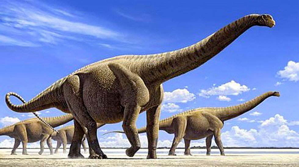 Largest ever: Paleontologists find 90-million-year-old fossil that belonged to 80 ton dinosaur
