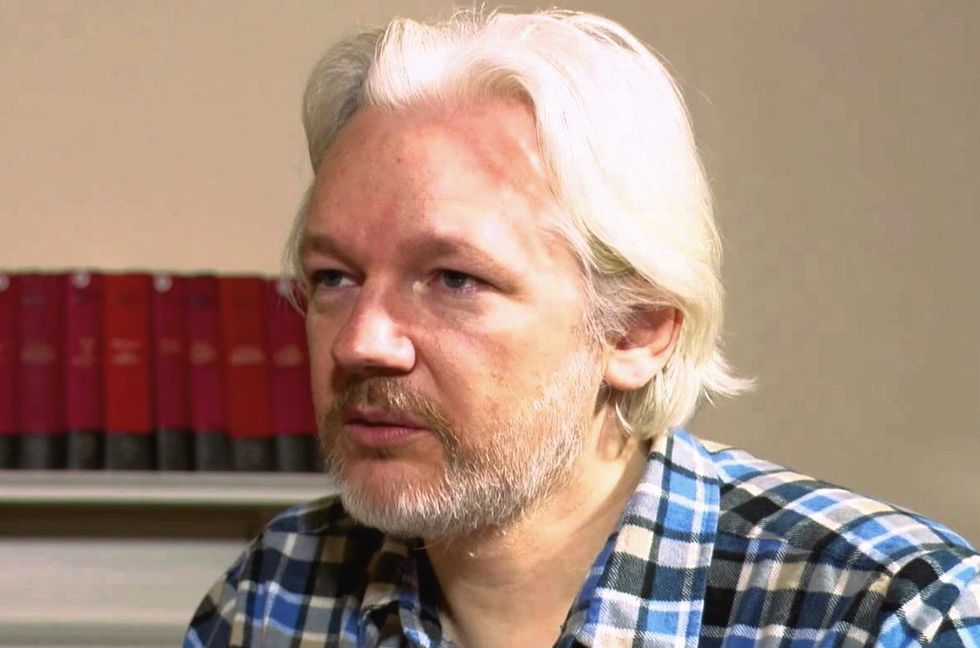 Expert says if Trump pardons Julian Assange it would be a 'quid pro quo' and a 'crime'