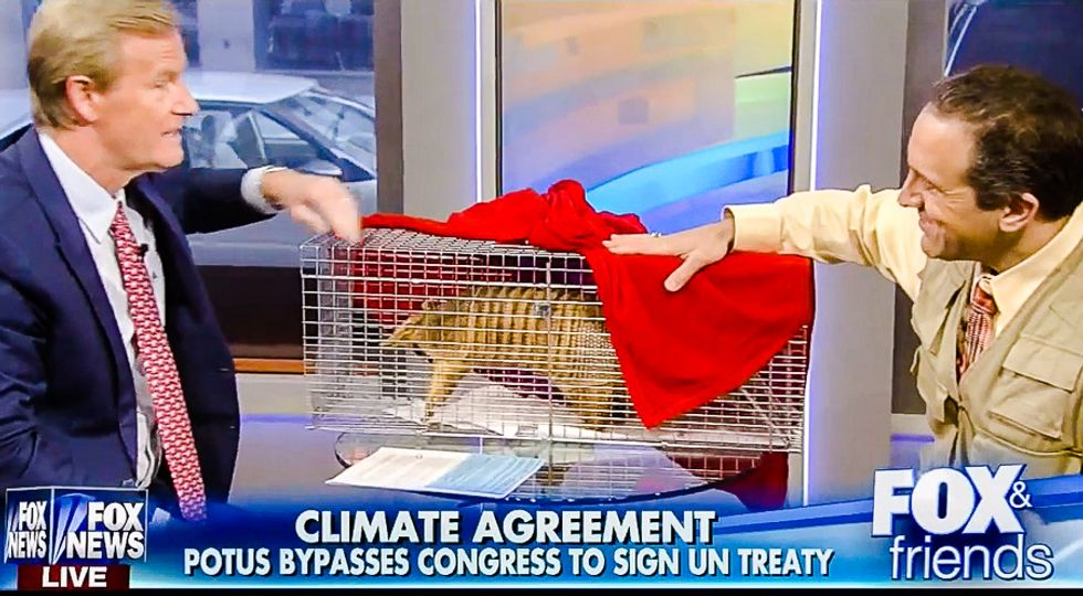 Fox uses stuffed armadillo to persuade viewers 'there's nothing to worry about with global warming'