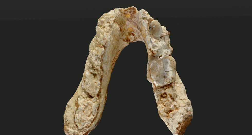 Fossils cast doubt on human lineage originating in Africa
