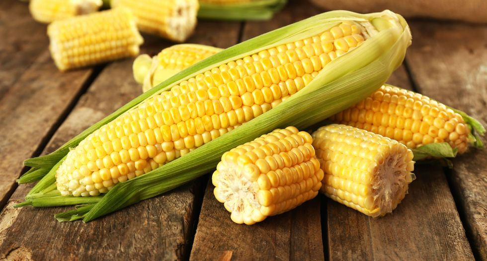 Chinese man gets three years in US prison for theft of corn secrets
