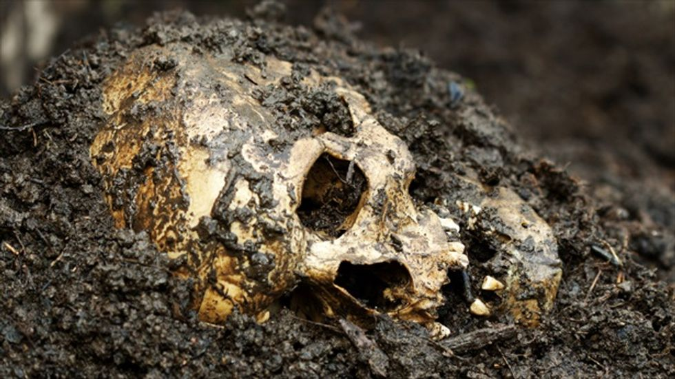 Construction workers in Bolivia uncover mass grave containing hundreds of skeletons