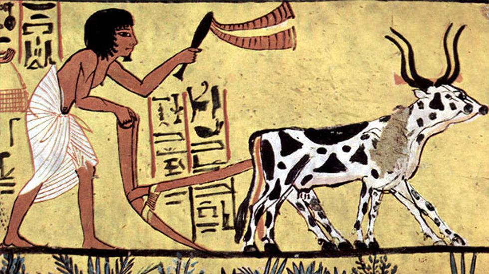 Agricultural revolution 10,000 years ago was key to the rise of ancient despots