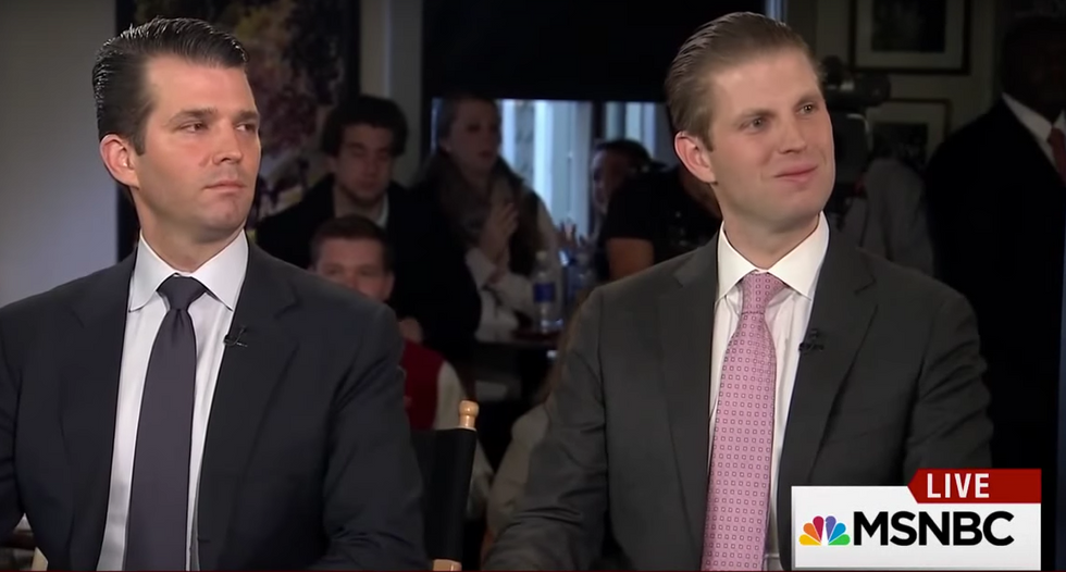 RNC officials gripe after Trump sons show up to plan 'strategy' to boost president's profile