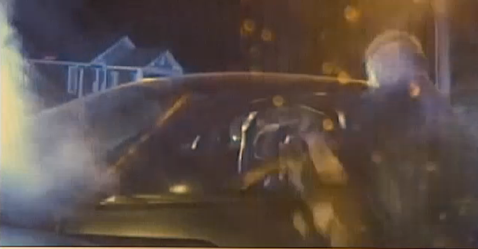 Cop cleared of wrongdoing after shoving police dog into suspect's car after pursuit ends