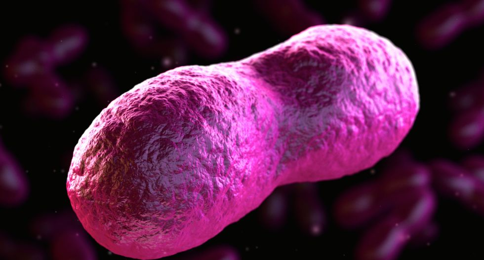 Michigan man recovering after being diagnosed with bubonic plague