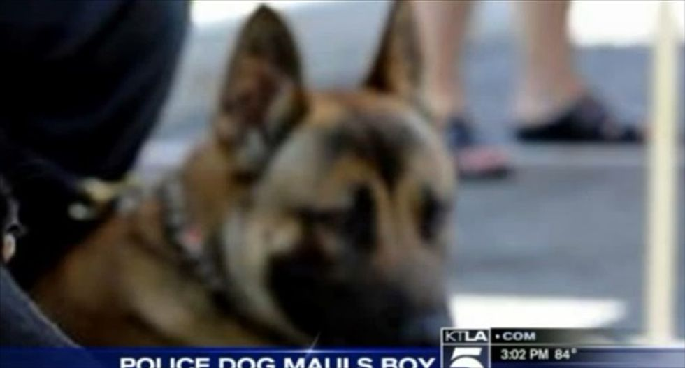 Calif. cop's 4-year-old son needs leg amputation after mauling by police K-9
