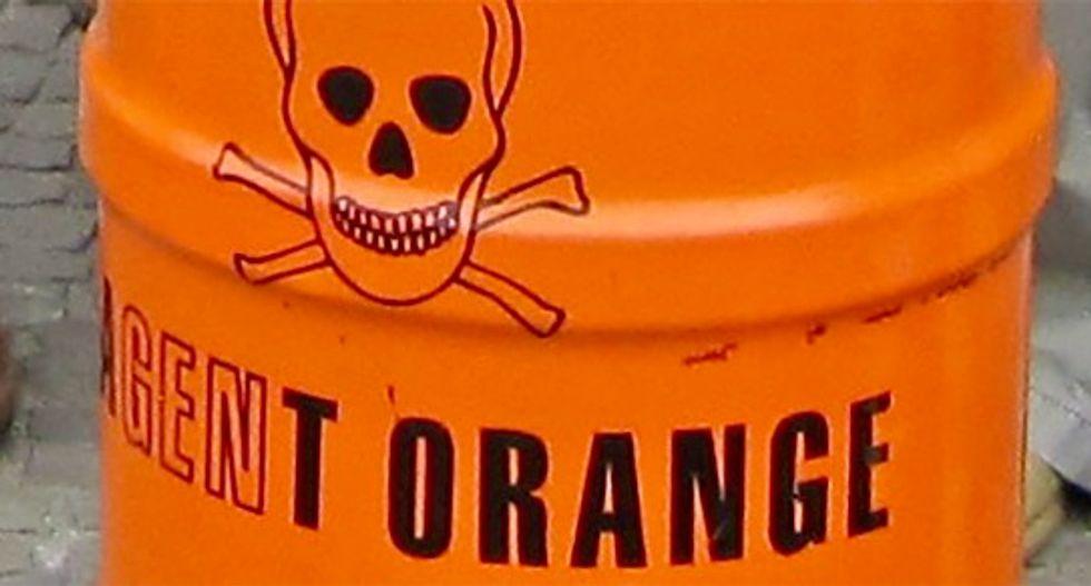 The Agent Orange widows club