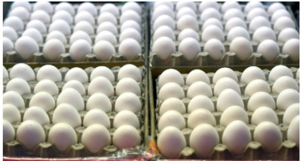 Cracking discovery: Japan scientist uses egg white for clean energy