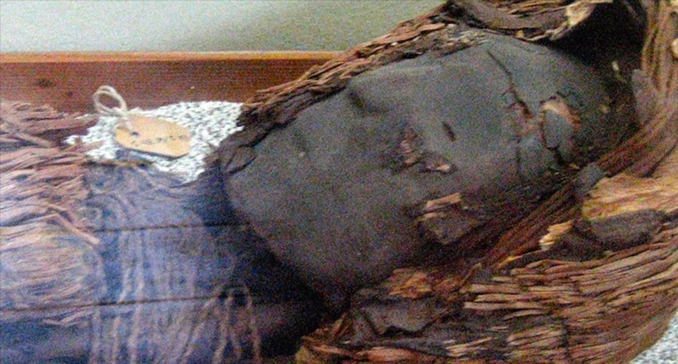 Scientists rush to stop 'accelerated' decaying of 7,000-year-old Chilean mummies