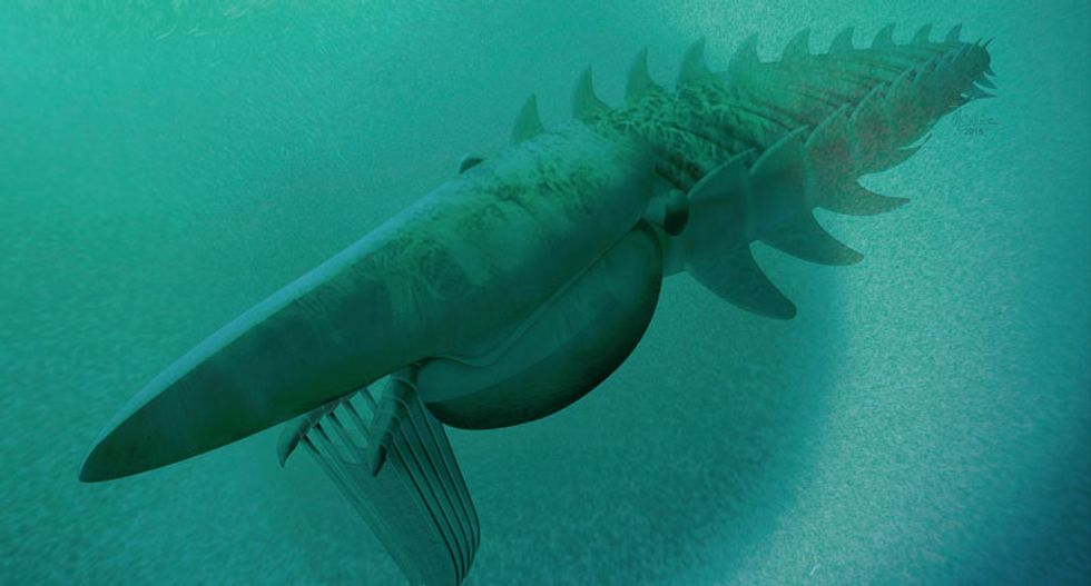 Meet Aegirocassis benmoulae: This massive sea monster roamed the oceans 480 million years ago