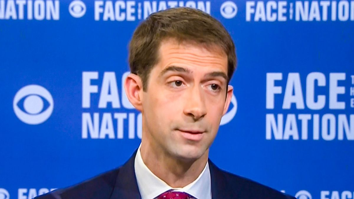 'Gigantic idiot' Tom Cotton faces backlash for attack on the American Rescue Act