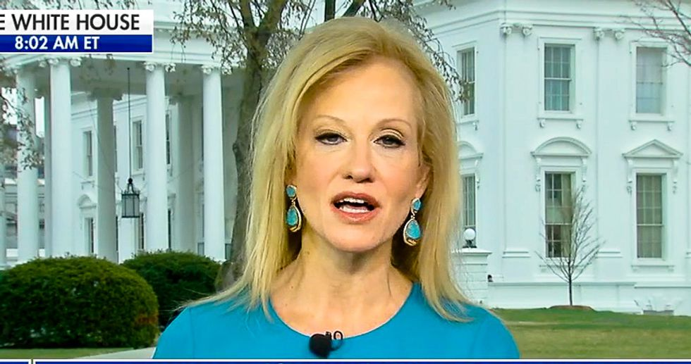 'She's a New Yorker': Kellyanne Conway says Hope Hicks quit to spend time with 'great family she's close to'