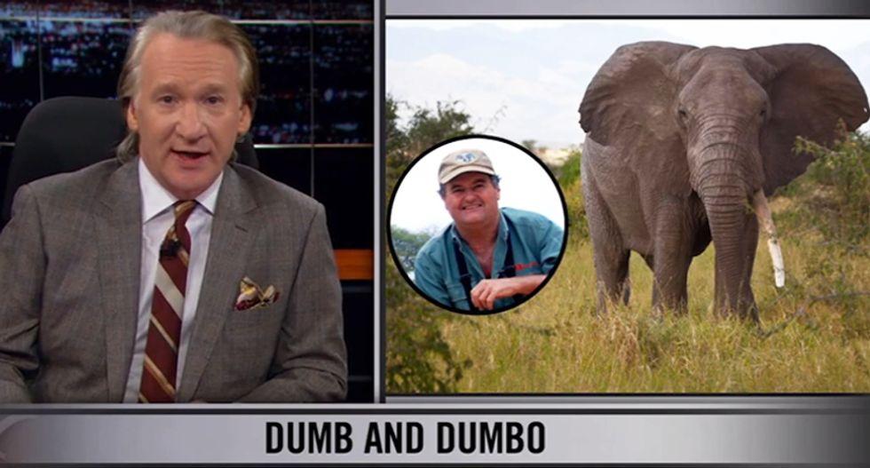 Bill Maher: If you're on a safari to kill elephants and the elephant kills you instead... 'good'