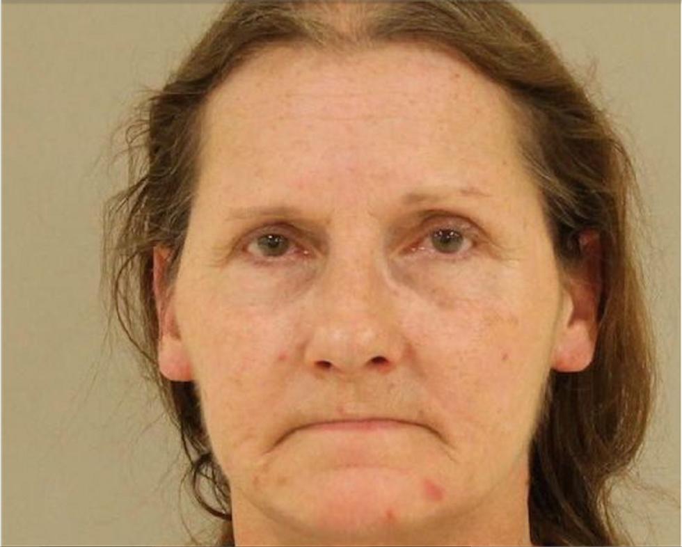 Pellet gun-wielding Michigan woman spews N-word at neighbors in fight over dog poop