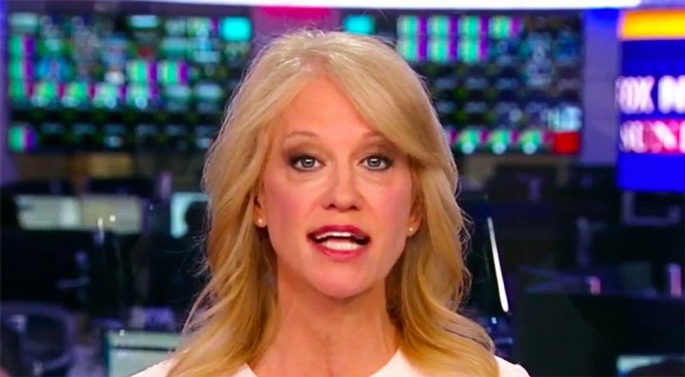 MSNBC guest slaps aside 'crazy Kellyanne Conway' for sticking her nose in Democratic Party disputes