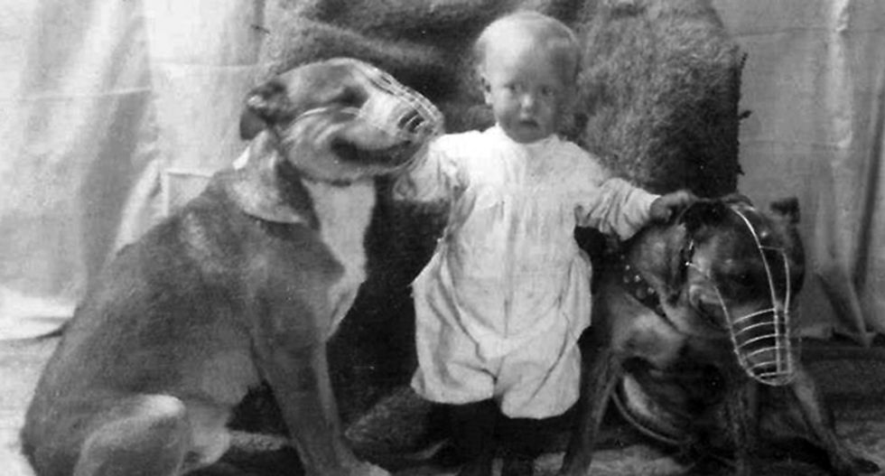 Pitbulls used to be considered the perfect 'nanny dogs' for children -- until the media turned them into monsters