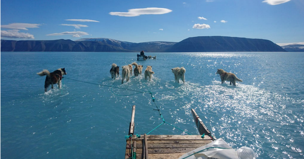 'This should scare the hell out of you': Photo of Greenland sled dog teams walking on melted water