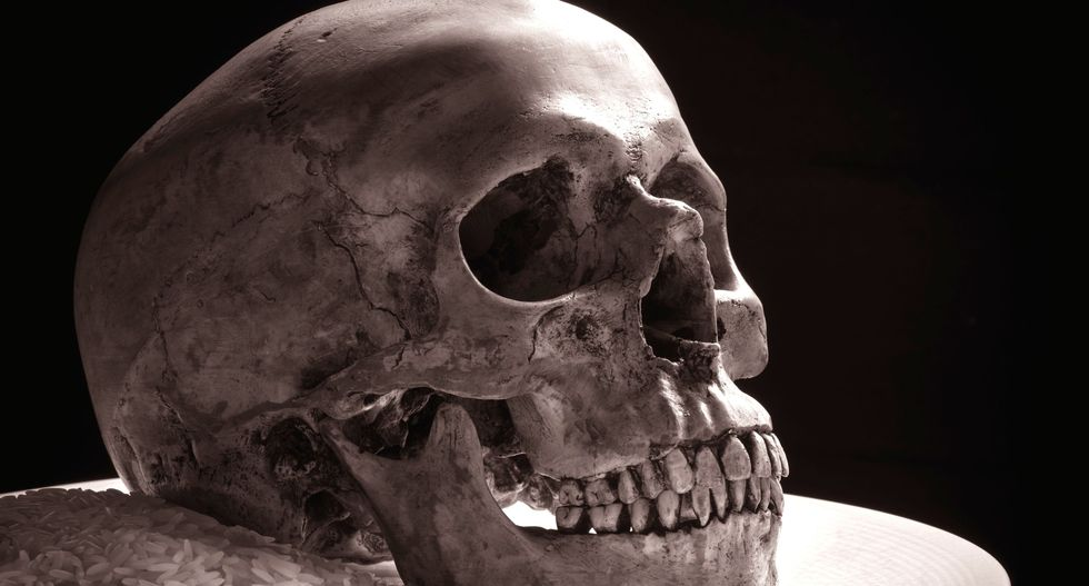 New fossil discovery suggests humans spread to Asia way before they got to Europe