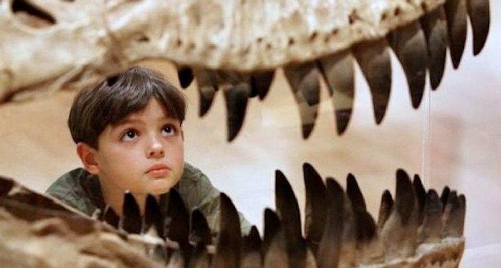 Argentine researchers find distant Tyrannosaurus relative
