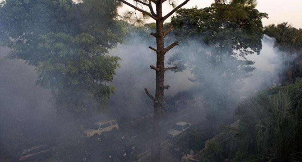El Nino could spark large-scale dengue fever epidemic