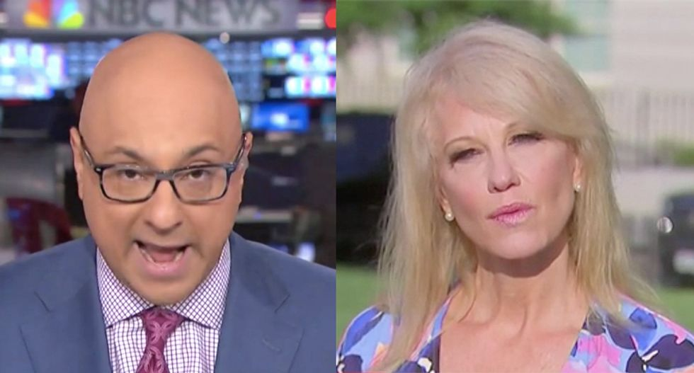 MSNBC's Ali Velshi nails Kellyanne Conway for not knowing what the labor secretary actually does
