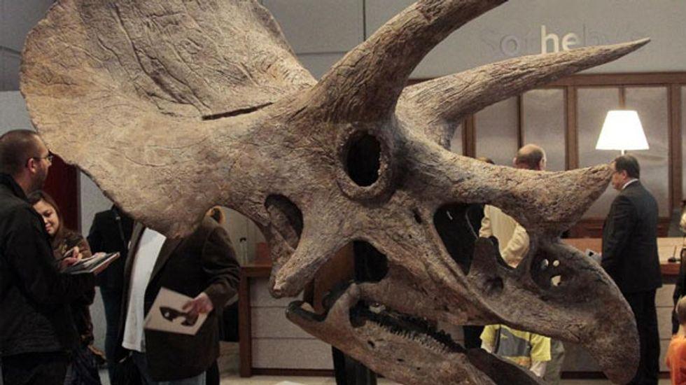 Laquintasaura venezuelae: This early dinosaur was turkey-sized, social, and a vegetarian