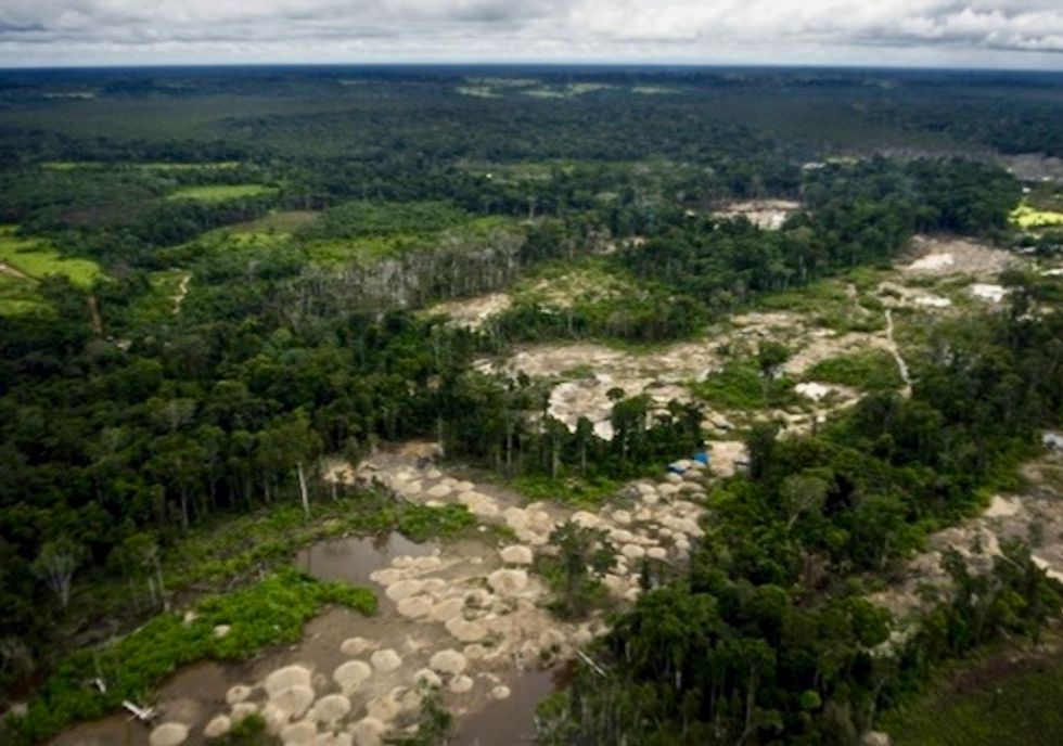 Peruvian Amazon undergoing deforestation at accelerating pace: official