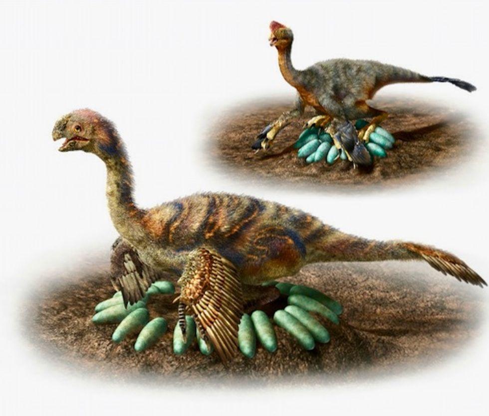 How does a one-ton dinosaur hatch its eggs? Carefully