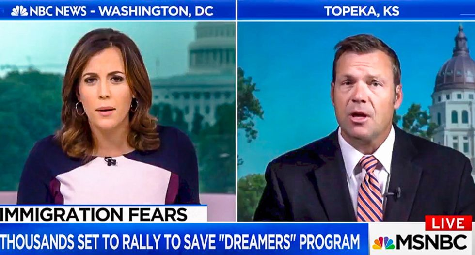 'What is your problem?' MSNBC's Hallie Jackson spanks DACA opponent Kris Kobach for lying about Dreamers