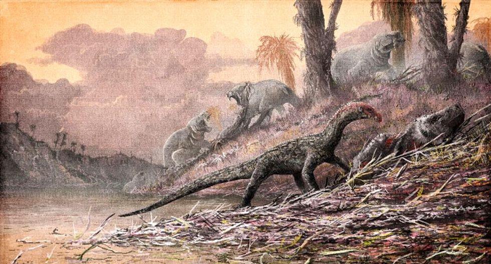 Dinosaur ancestors looked like crocodiles: study