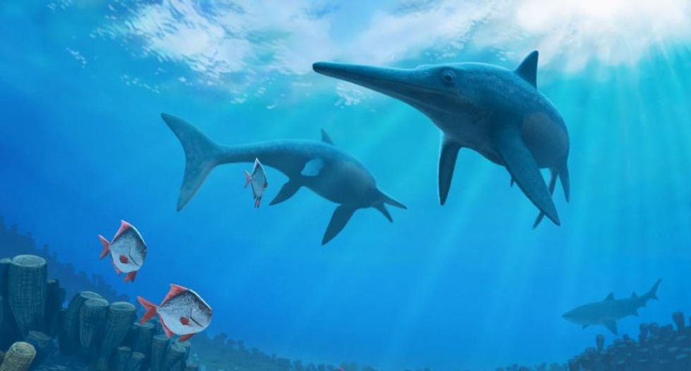 Climate change wiped out prehistoric 'sea dragon': study