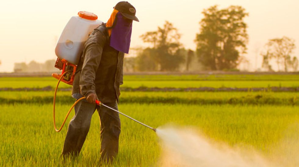 Monsanto's 'Roundup' weedkiller may be causing kidney failure in farmworkers: study