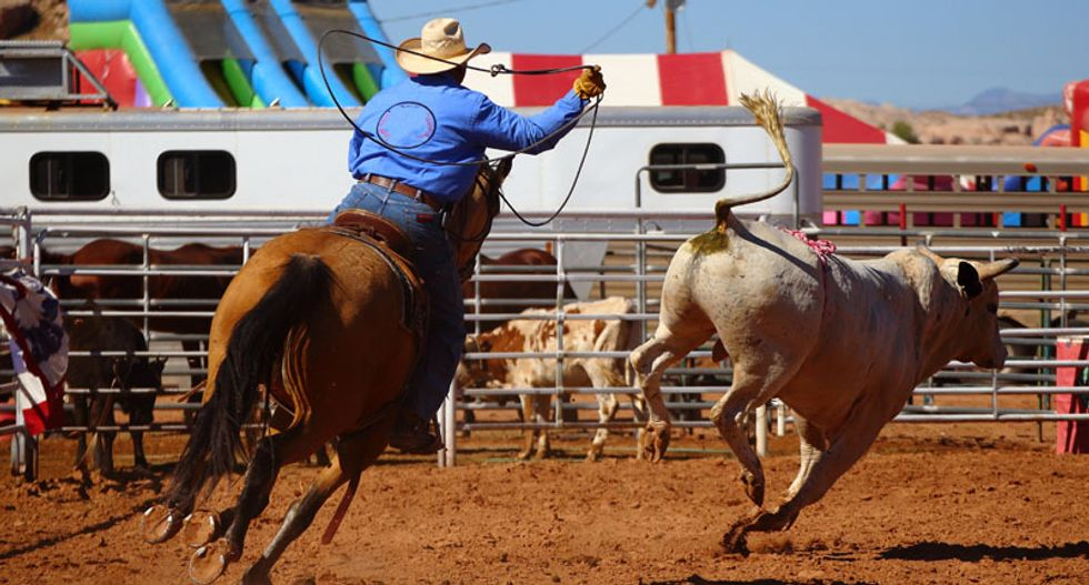 Officials knew coronavirus could spread at the Houston rodeo but proceeded with the event anyway