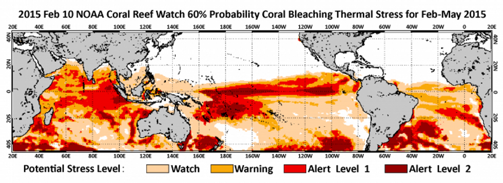 Four-month coral bleaching outlook through May 2015. Credit: NOAA Coral Reef Watch