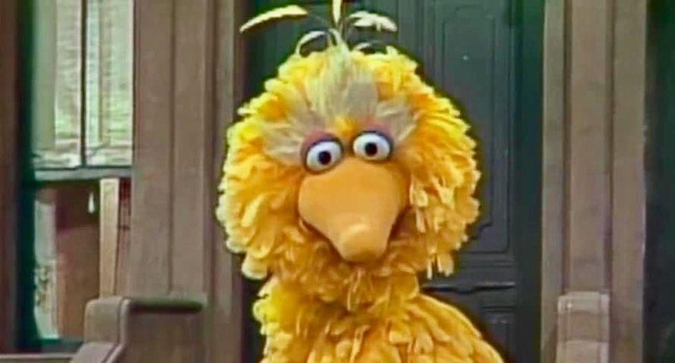 Citing Big Bird, Trump Budget Director Mick Mulvaney defends PBS cuts