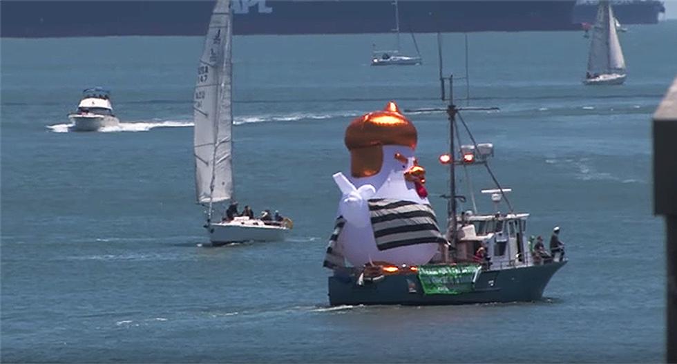 Trump chicken dressed in prison stripes circles Alcatraz in San Francisco Bay